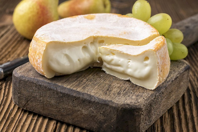 Faire son fromage maison de type reblochon