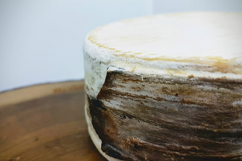 Learn how to make your own vacherin type cheese, uncooked pressed cheese and washed rind!