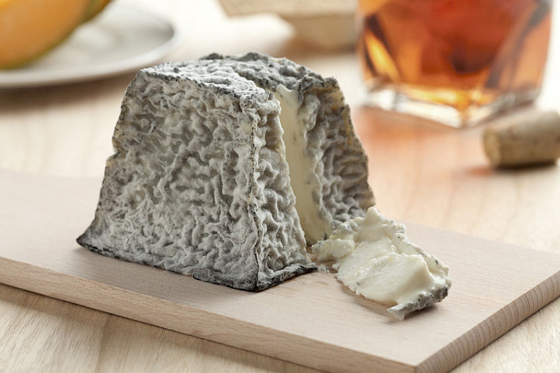 Learn how to make your own goat cheese, fresh or aged.